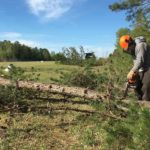Chief Pilot Bruce Powell cutting trees