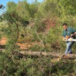 Instructor Pilot Mike Bunn cutting trees